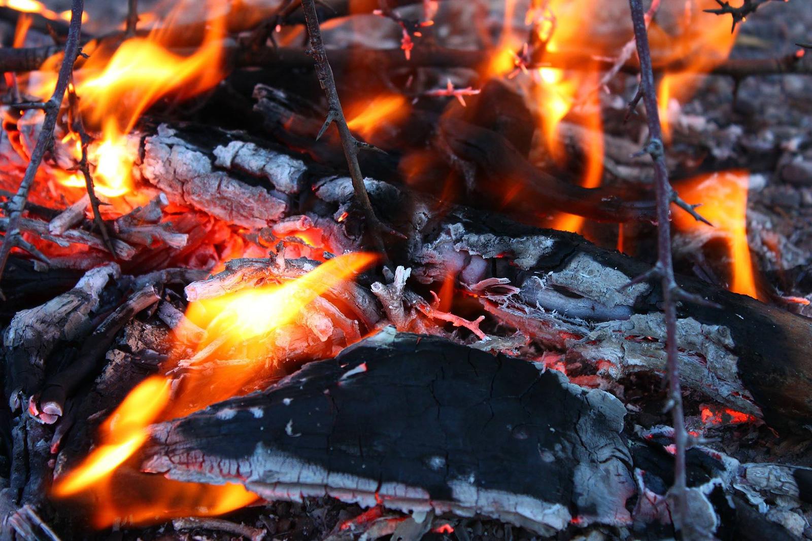 asado-fuego-brasas